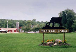 Wester Farm Bed & Breakfast